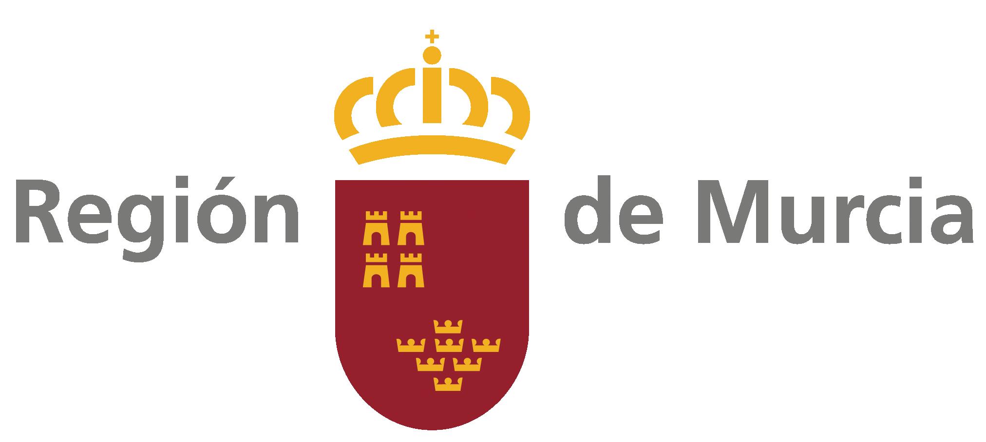 98703 Logo preferente color